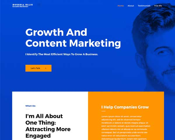 #1 Focused Growth Marketer Business Theme