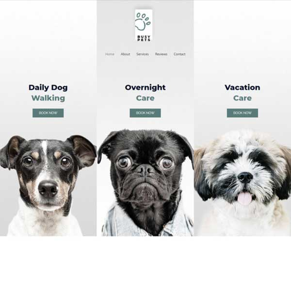 Petcare eCommerce WordPress WooCommerce Custom Website