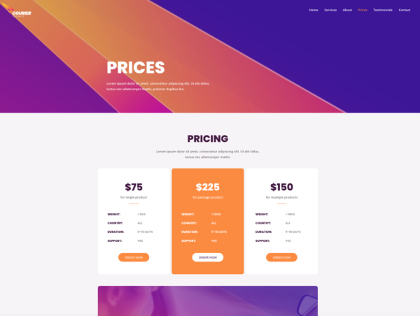 #1 Certified Courier and Delivery Services Theme