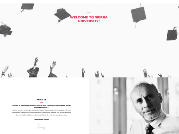 #1 Master University Business Theme