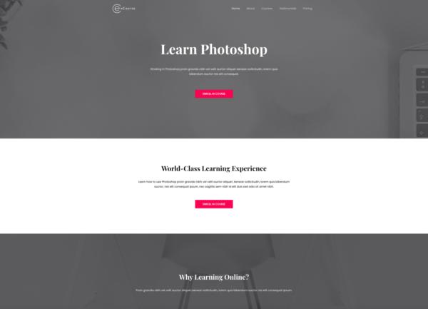 #1 Endorsed Ecourse Learn Photoshop Business Theme