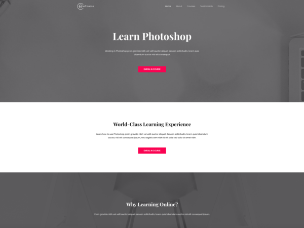 #1 Endorsed Ecourse Learn Photoshop Business Theme