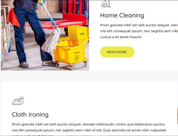cleaning agency services