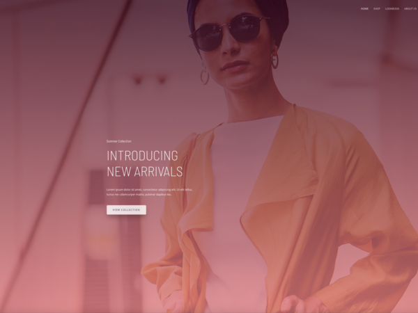 #1 New Hot Brandstore Pro eCommerce Theme